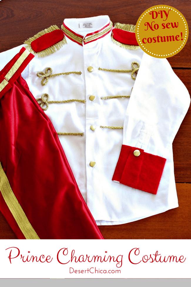 DIY-No-Sew-Prince-Charming-Costume