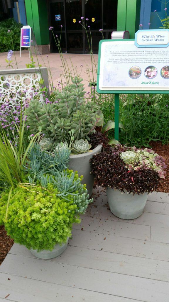 Epcot flower and garden festival 2017 disney in your day - Epcot flower and garden festival 2017 ...
