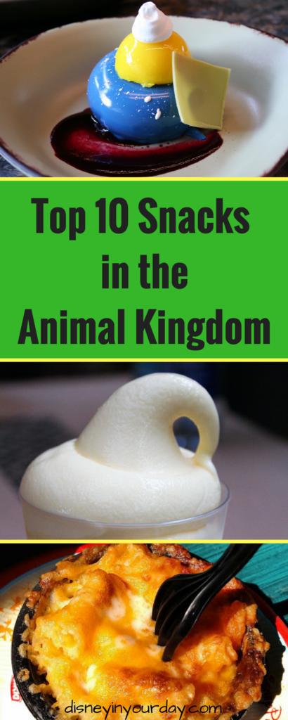 Animal Kingdom snacks - Disney in your Day
