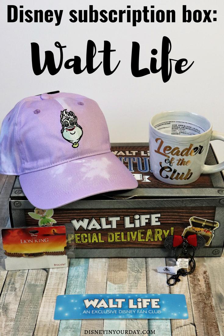 Walt Life - Disney in your Day