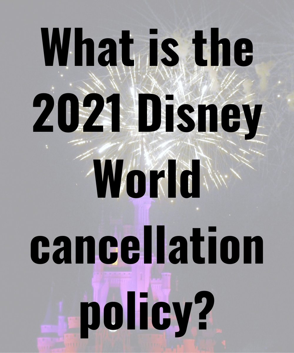 2021 Disney World trip - Disney in your Day