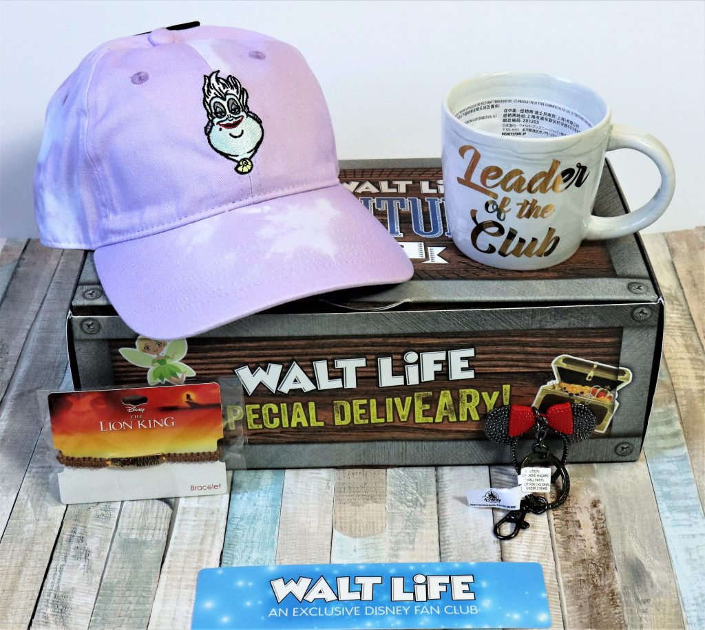 Disney Subscription Boxes - Walt Life -  Disney in your Day